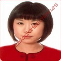 Interprete de chino instalación técnica